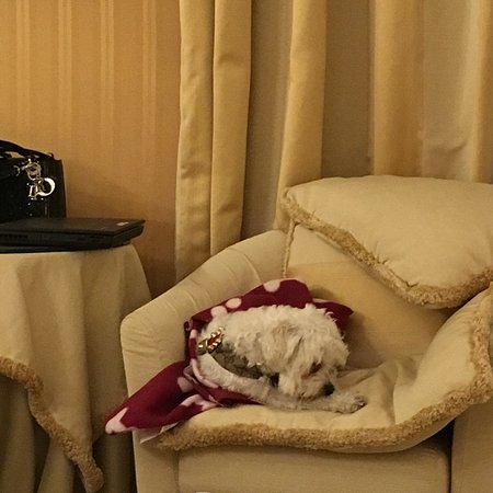 Hotel a La Commedia: photo1.jpg