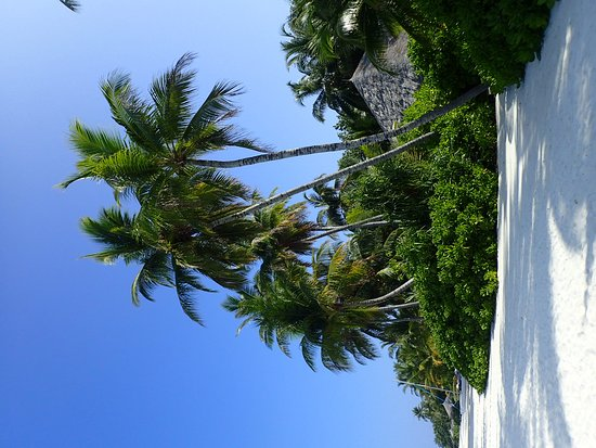 Veligandu Island Resort & Spa: OI000007_large.jpg