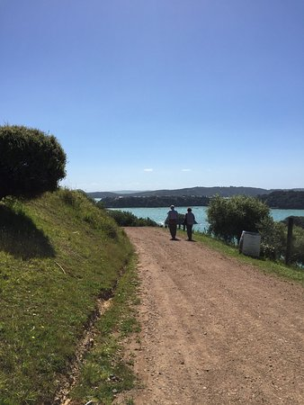 Waiheke-øya, New Zealand: photo2.jpg