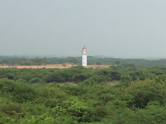 ‪‪Nagapattinam‬, الهند: Point Calimere lighthouse‬