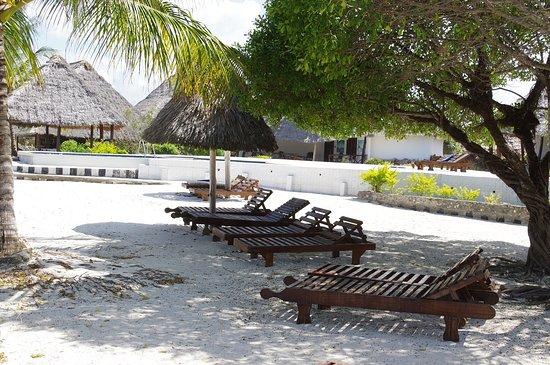 L'Oasis Zanzibar