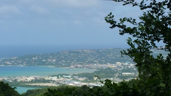 Wiltshire, Jamaica: View from the deck