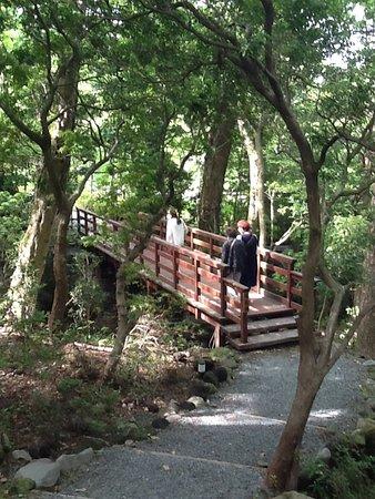 Horai Garden: 小涌園側から蓬莱橋を渡って蓬莱園に行く道は木漏れ日がきれいでした