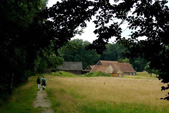 De Lutte, The Netherlands: getlstd_property_photo