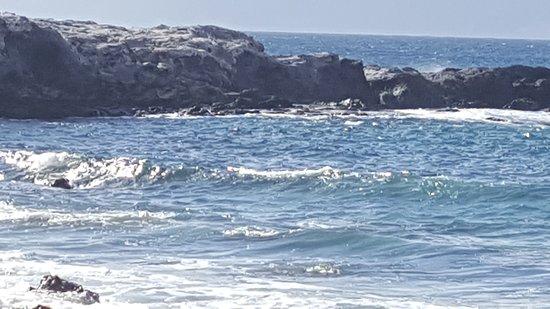 Waialua, HI: 20160920_161000_large.jpg