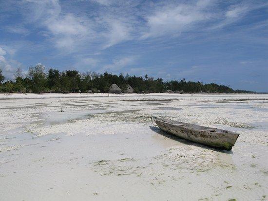 Ndame Beach Lodge Zanzibar: Vue de la plage depuis le lagon à marée basse