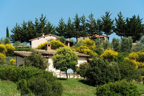 Cinigiano, Italia: panoramica giardino e villette