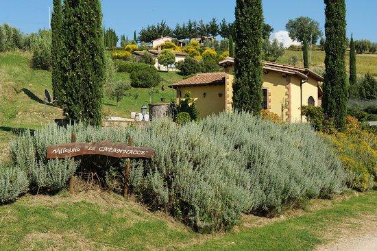 Cinigiano, Italia: panoramica esterno