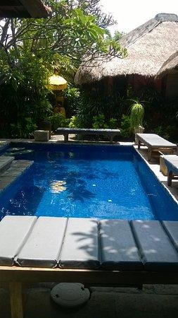Flashback's: Petite piscine très intimiste