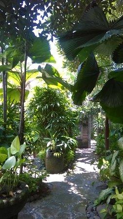 Flashback's: Jardin entre le restaurant et les chambres