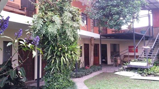 Mi Casa Hostel: 20161105_155043_large.jpg