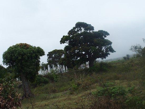 Tolanaro, Madagascar: am Rande des Parks