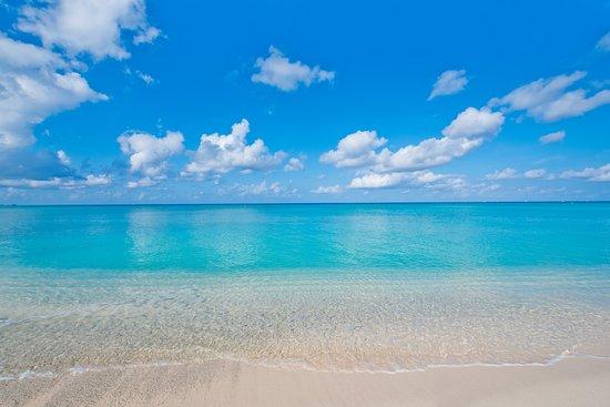 Caribbean Club Picture
