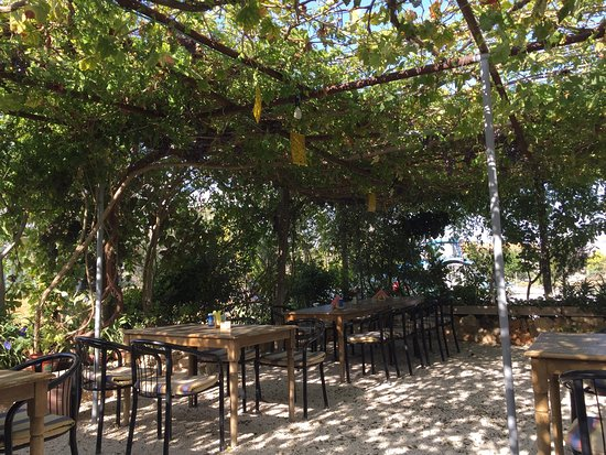 Polemi, Chipre: Very peaceful and pleasant place to eat