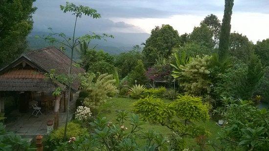 Karangsari Guest House: Vue sur rizières et montagnes depuis les  chambres du haut