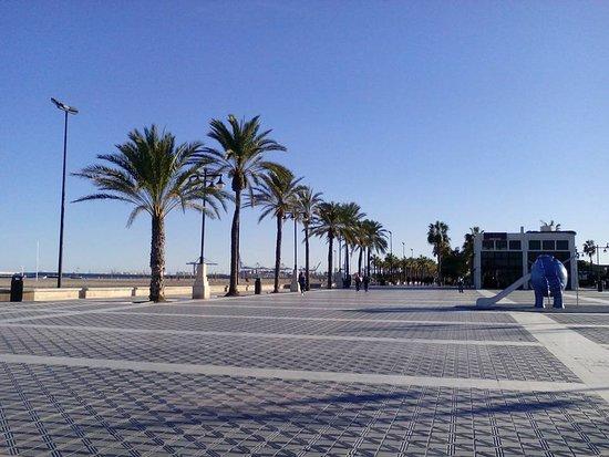 Playa de la malvarrosa valencia espa a foto di playa for Spiaggia malvarrosa valencia