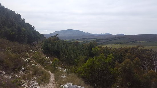 Hermanus, Sudáfrica: View headed up the canyon on the Red route