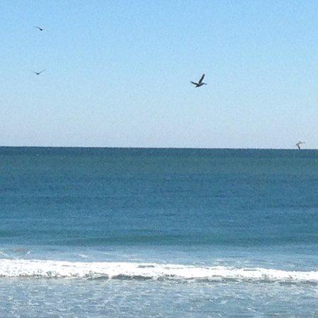 Surf City, Carolina del Norte: photo0.jpg