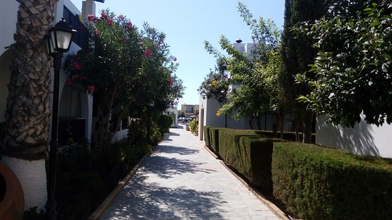 Kefalonitis Hotel Apts.: территория