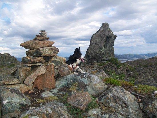 Leka Municipality, Noruega: Lekamøya. Fin spasertur opp dit ,utsikta var vidstrakt anbefaler dette.