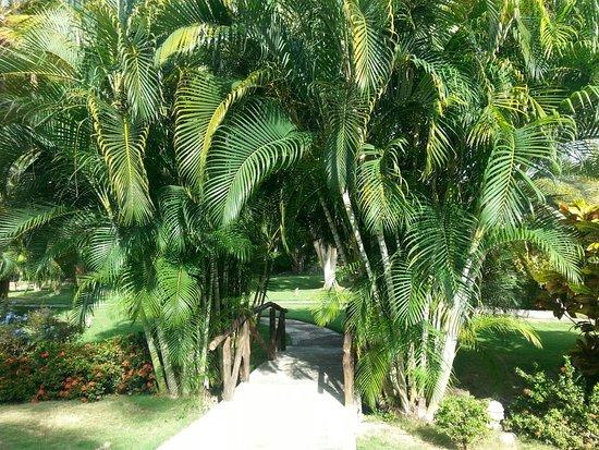 Hotel Posada La Bokaina: Puente peatonal