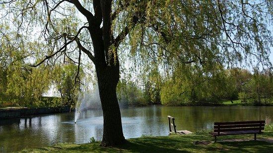 J.C. Saddington Park
