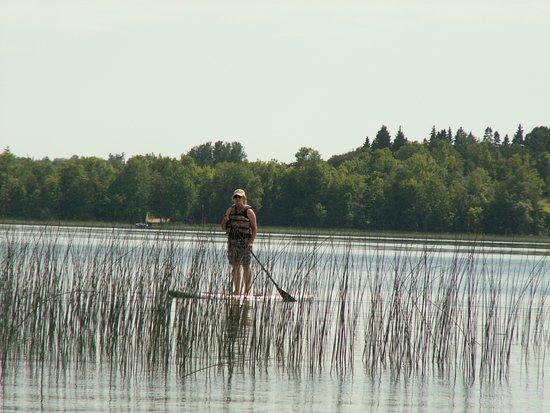 Hines, Миннесота: Paddle Boards