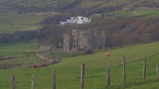 Clifden Castle: 20161110_114433_large.jpg