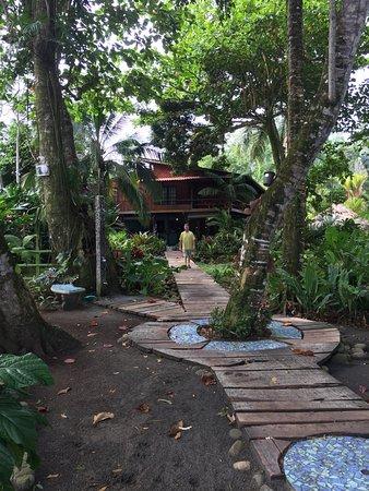 Hotel Banana Azul Photo