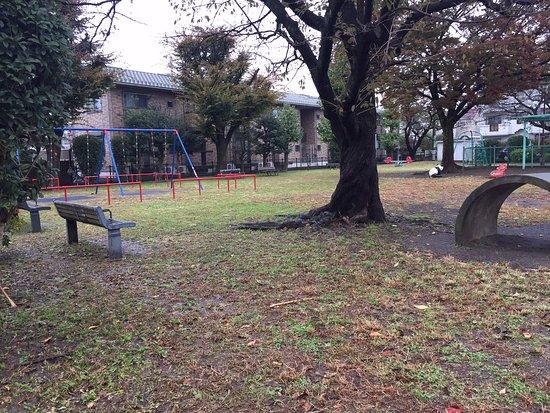 Izumi Tamagawa Children's Park