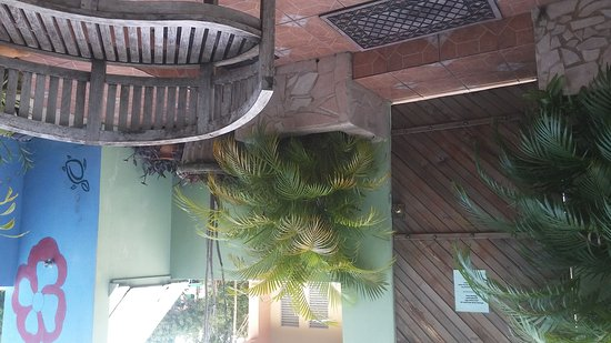 Palmetto Guesthouse: IMG-20161111-WA0007_large.jpg