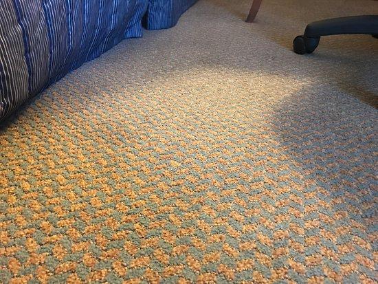 filthy carpet at the Hampton Inn Chicago/Elgin