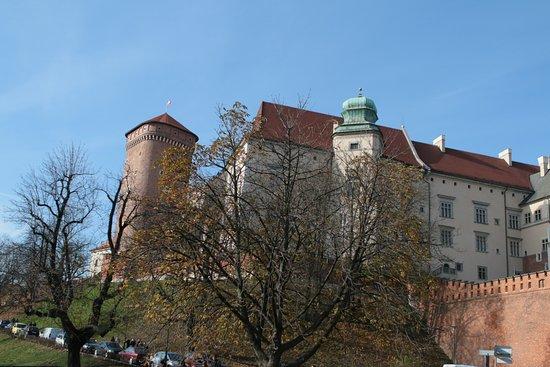 Cool Tour Company: Wawel castle hill