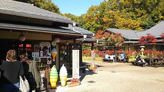 Minokamo, Japonia: DSC_1366_large.jpg