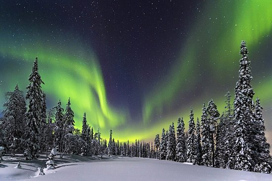 Overkalix, Svezia: MAD Husky Tours