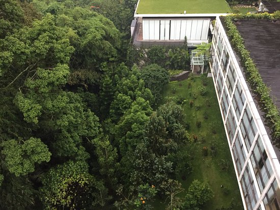 Padma Hotel Bandung: Top down view from the room