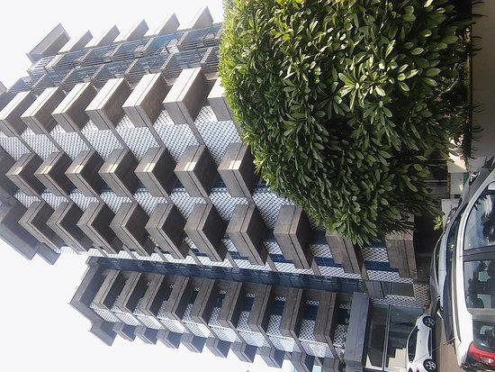 Hotel Gorgulho: 20161110_101833_large.jpg