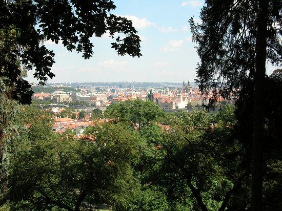 เพนชั่น พริมัส: Prague 1
