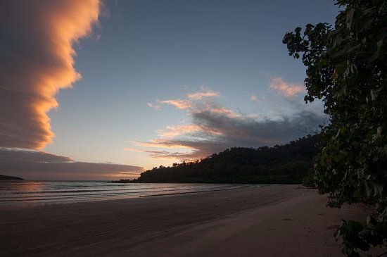 Hinchinbrook Island: Campsites by beach