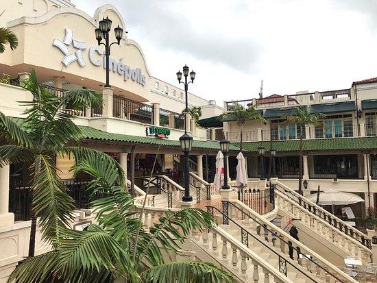 Hotels Near Cocowalk In Coconut Grove Fl