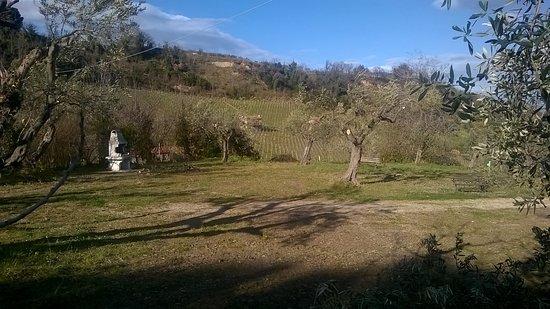 Orsogna, Italy: area camper