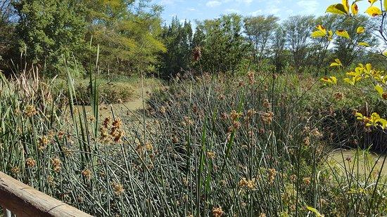 Addo, Sudáfrica: Aussicht über den kleinen See