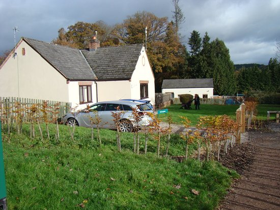 Parkend, UK: 'The Bungalow' at Whitemead Forest Park