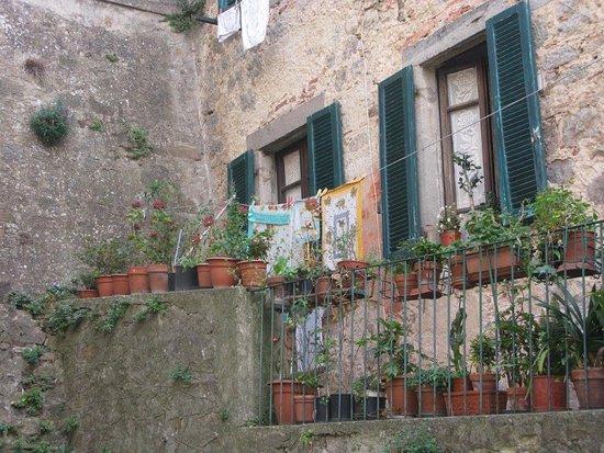 Arcidosso, Ιταλία: Terrazza e fiori
