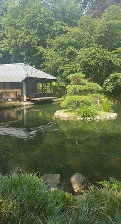 Image 1 Large Jpg Bild Von Japanischer Garten Japanese Garden