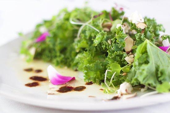 Holetown, Barbados: The Mews Appetizer - Local Kale & Almond Salad (Archer's Organics)