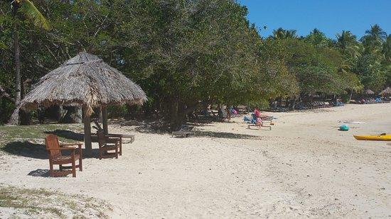 Castaway Island Day Trip: castaway beach