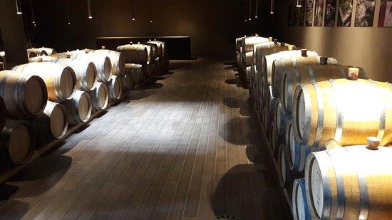 San Casciano in Val di Pesa, Italia: la cantina del vinsanto