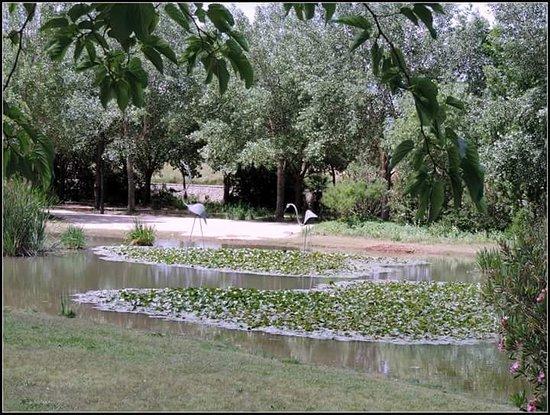 Parque de la Rambleta