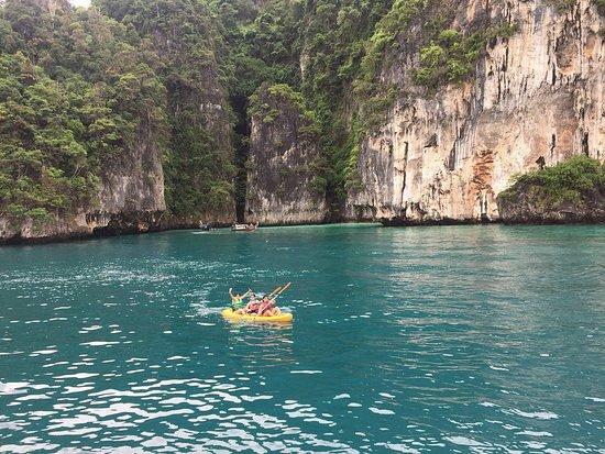 Maya bay plankton